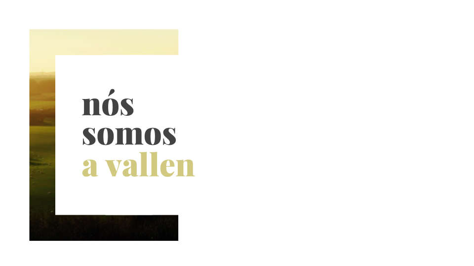 Vallen - Posicionamento